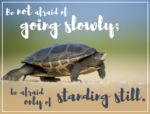 Be Not Afraid of Going Slowly.png