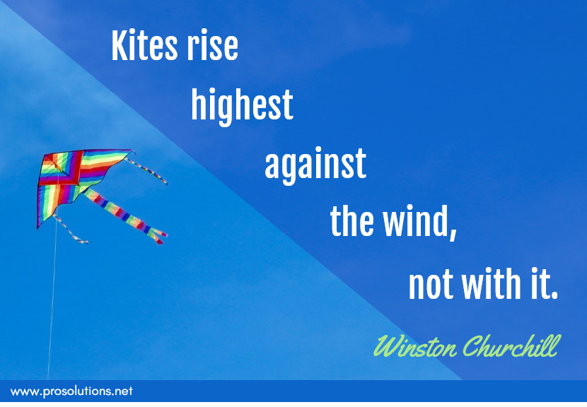 ProSolutions - Kites Rise Highest.png